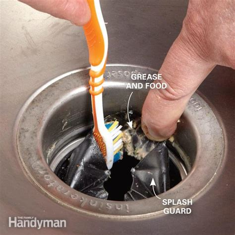 Clean Sink Disposal how to clean garbage disposal the family handyman