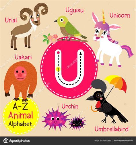 imagenes en ingles con u trazo de letra de alfabeto u lindo ni 241 os zoo de divertidos