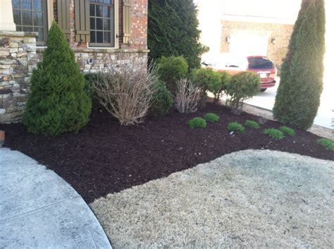 mulch beds photos of our work golden pine straw