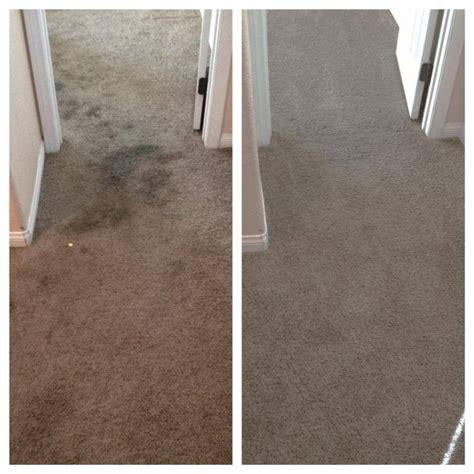 sofa cleaning las vegas dry carpet cleaners las vegas floor matttroy