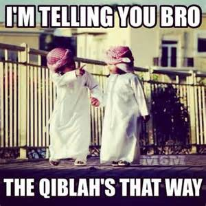 Halal Memes - halal jokes and funny quotes stories for muslim kids