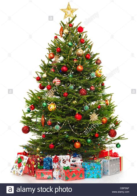 beautiful decorated tree 100 beautiful decorated trees beautiful