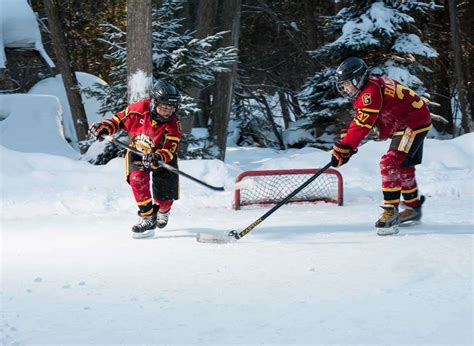 backyard hockey online backyard hockey online 28 images backyard hockey 2005