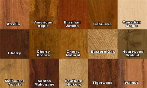 Coloured Flooring Company by