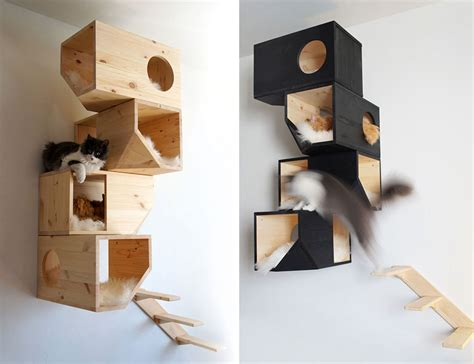 Cat Shelf Ideas by 25 Awesome Furniture Design Ideas For Cat Bored Panda