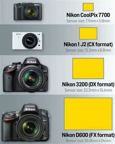 Lensa Nikon Dan Gambar tentang nikon antara lensa fx dan dx serta fx