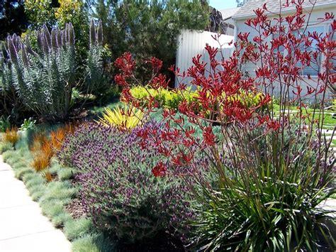 english garden california style traditional landscape