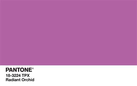 Farbe Orchidee by Layla Make Up Occhi Verdi