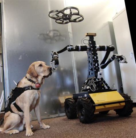New Technology For Dogs | dogs technology and the future of disaster response