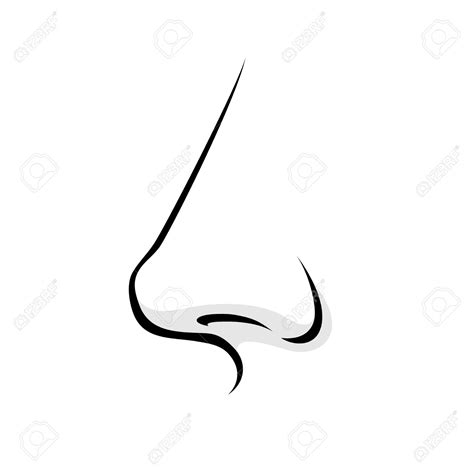 black and white clipart nose in black and white clipart 101 clip