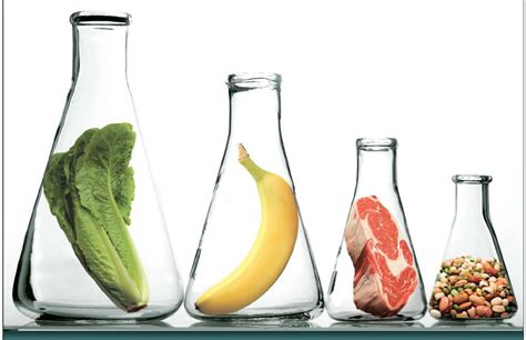 tecnologia alimentare energia cibo dove la scienza non pu 242 arrivare la