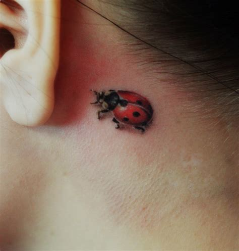 tattoo 3d small tiny ladybug behind the ear 3d tattoo tattoos