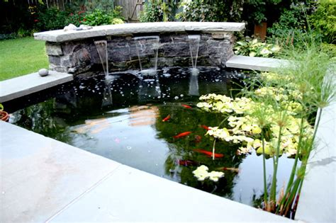 the gallery for gt modern koi pond design