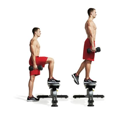 full body workout with dumbbells and bench the best two dumbbell workout