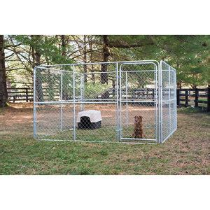 tsc kennel stephens pipe steel kennel 10 ft w x 10 ft l x 6 ft h at tractor supply co
