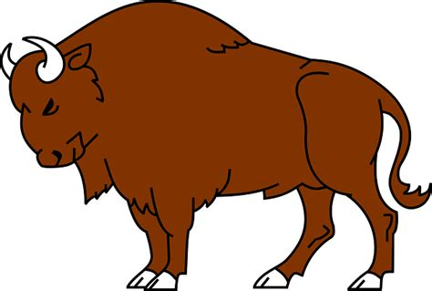 Bison Clipart free to use domain bison clip
