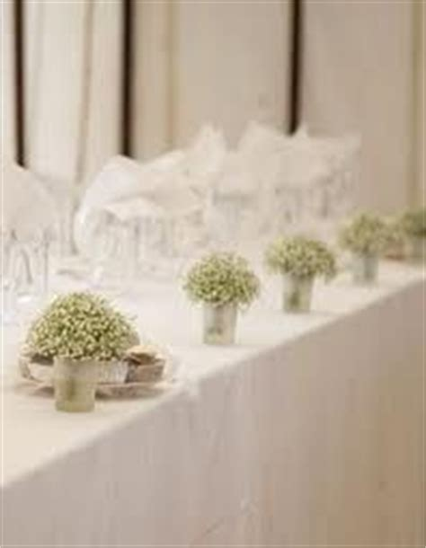 1000 images about gypsophila wedding ideas on