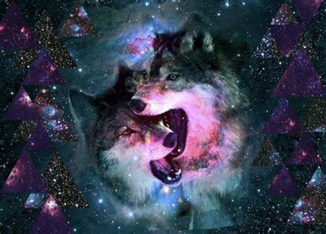 themes tumblr wolf galaxy hipster wolf image 698363 on favim com