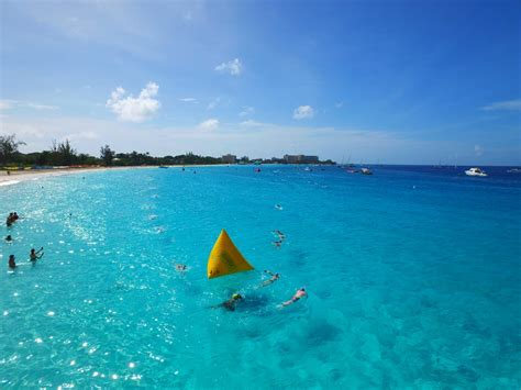 Open Water barbados open water festival home