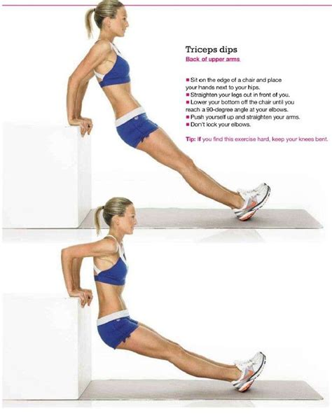 bench dips with weight backonpointe tricep dips weight benches and stability ball