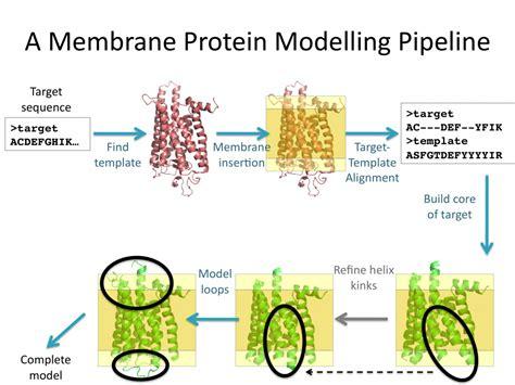 protein 3d structure prediction membrane protein modelling pipeline oxford protein