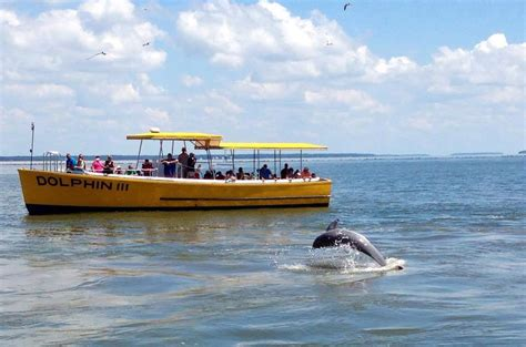 savannah boat rental charters and tours on tybee tybee island georgia