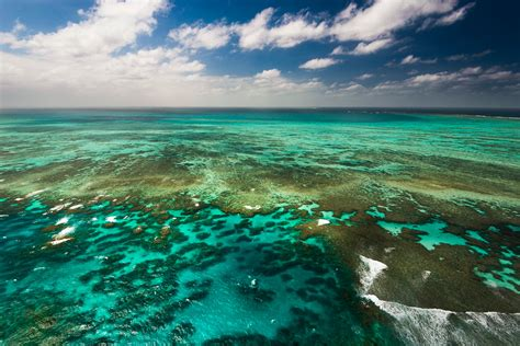 the the great barrier reef of australia its products and potentialities containing an account with copious coloured and photographic illustrations and coral reefs pearl and pearl shell bãªch books great barrier reef the largest coral reef tourism in the