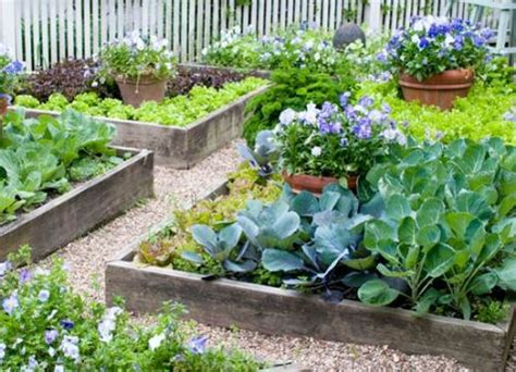 amazing vegetable gardens how to make a vegetable garden in small spaces 5 ways for