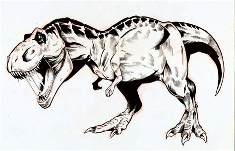 Drawing T Rex by T Rex By Nasirgan On Deviantart