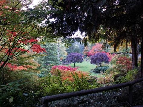 garden fall fall at butchart gardens bc canada you got