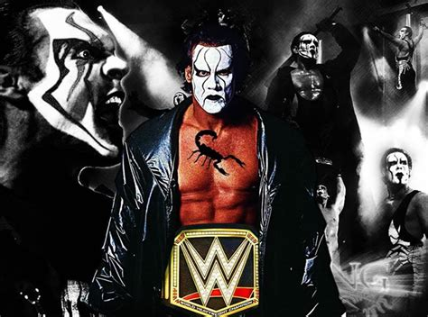 Sting Keeps The Going by Do We Want Sting To Be World Heavyweight Chion