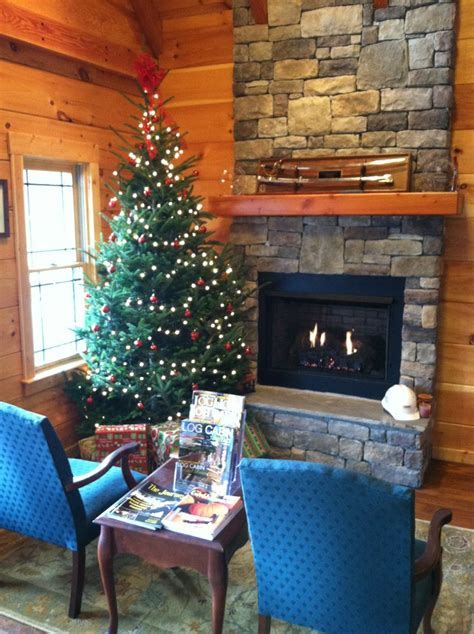 21 Best Fireplaces Images On Pinterest Non Vented Fireplace