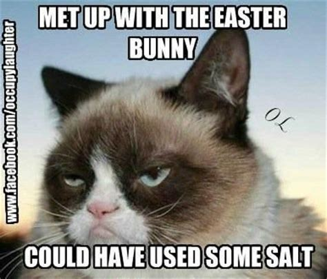 Easter Meme Funny - 25 funny easter memes quotes words sayings