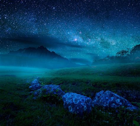 starry what a beautiful world