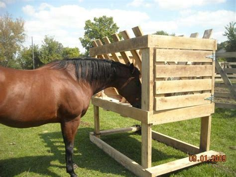 Hay Racks For Horses In Pasture by Hay Feeder For Pasture