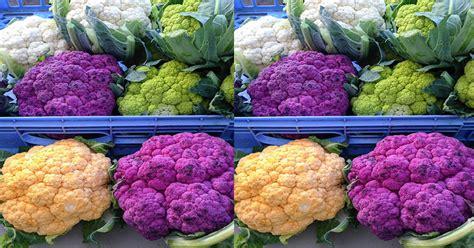 Kembang Warna Warni kembang kol warna warni sayuran menarik untuk masakan okezone lifestyle