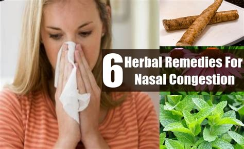 6 nasal congestion herbal remedies treatments