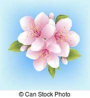 fiore giapponese fiore ciliegia sopra albero giapponese bianco fiore