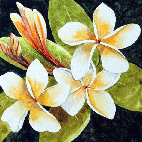 hawaiian flower painting nancy goldman tropical fragrance watercolor