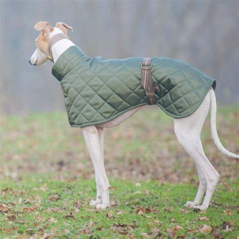 Pattern Greyhound Coat | dog coat notonthehighstreet com sighthounds