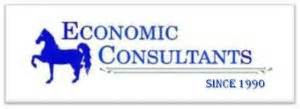 Econ Consultig To Mba To Equity Research by Economic Consultants Funding Debt Equity Bg S Sblc S