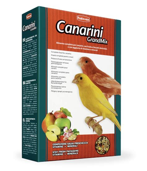 alimenti per canarini mangime per uccelli alimenti per uccelli domestici padovan