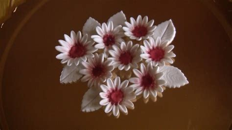 come fare fiori con la pasta di zucchero come realizzare fiori e foglie in pasta di zucchero