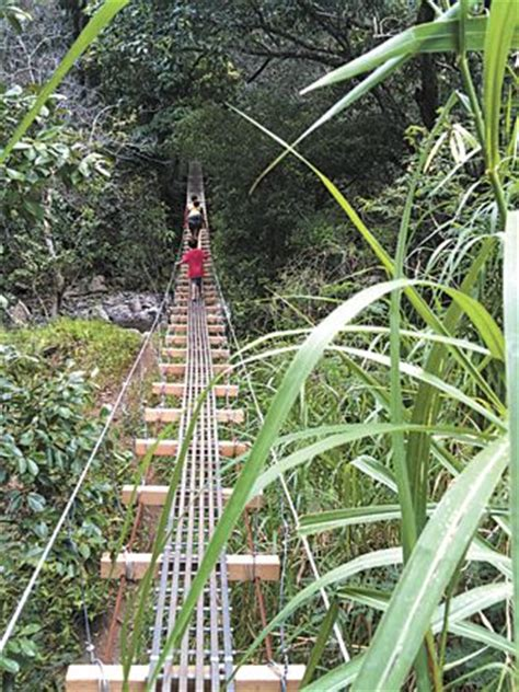 swinging bridges hike maui meer dan 1000 idee 235 n over maui op pinterest hawaii oahu