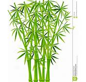 Vector Illustration Of Bamboos Stems On A White Background