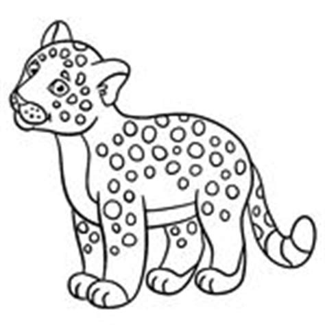 cute jaguar coloring pages baby wildcat cartoon stock illustrations 237 baby
