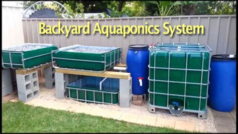 backyard systems backyard aquaponics systems easy design and latest