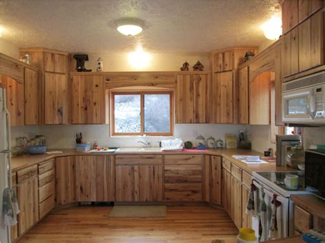 kitchen colors with hickory cabinets l shaped cabinet hinges the stylish and