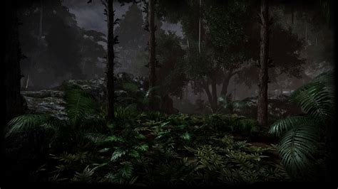 black and white jungle wallpaper wallpaper warehouse images