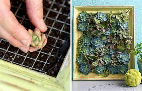 giardini verticali fai da te 14 idee fai da te per creare bellissimi giardini verticali